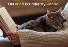 cat can control our mind